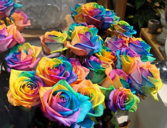 How to grow a Rainbow Rose, Naturally : ★★Love Love Mode★★